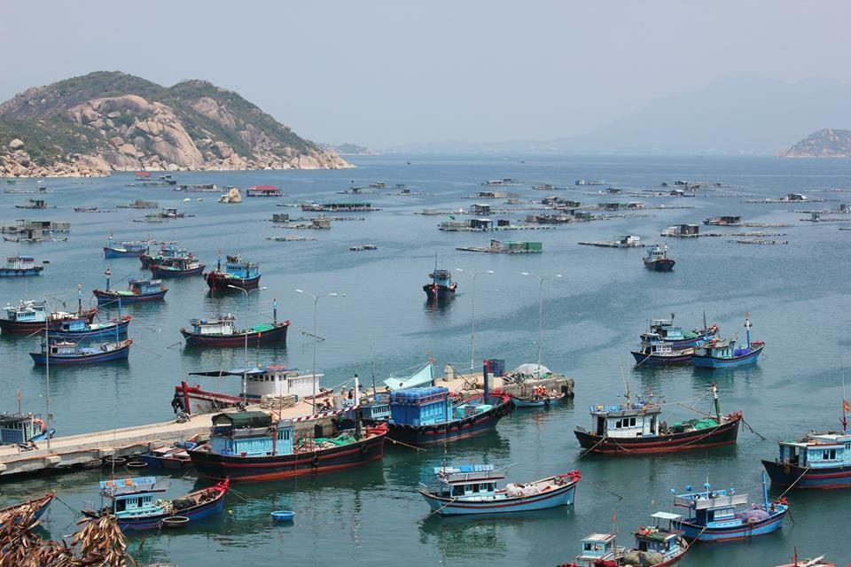 cảng ba ngòi